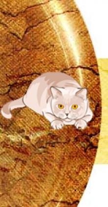 Кот ученый - студия иностранных языков